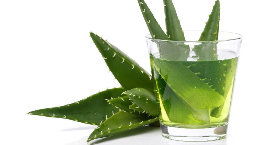 Aloe vera e sumo de aloe e o seu uso cosmético